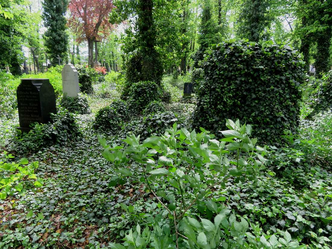 German Evangelical Cemetery